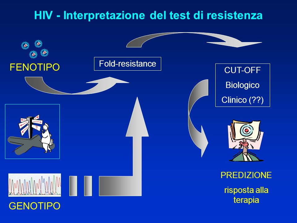 HIV - Interpretazione del test di resistenza FENOTIPO GENOTIPO Fold-resistance CUT-OFF Biologico Clinico ( ) PREDIZIONE risposta alla terapia
