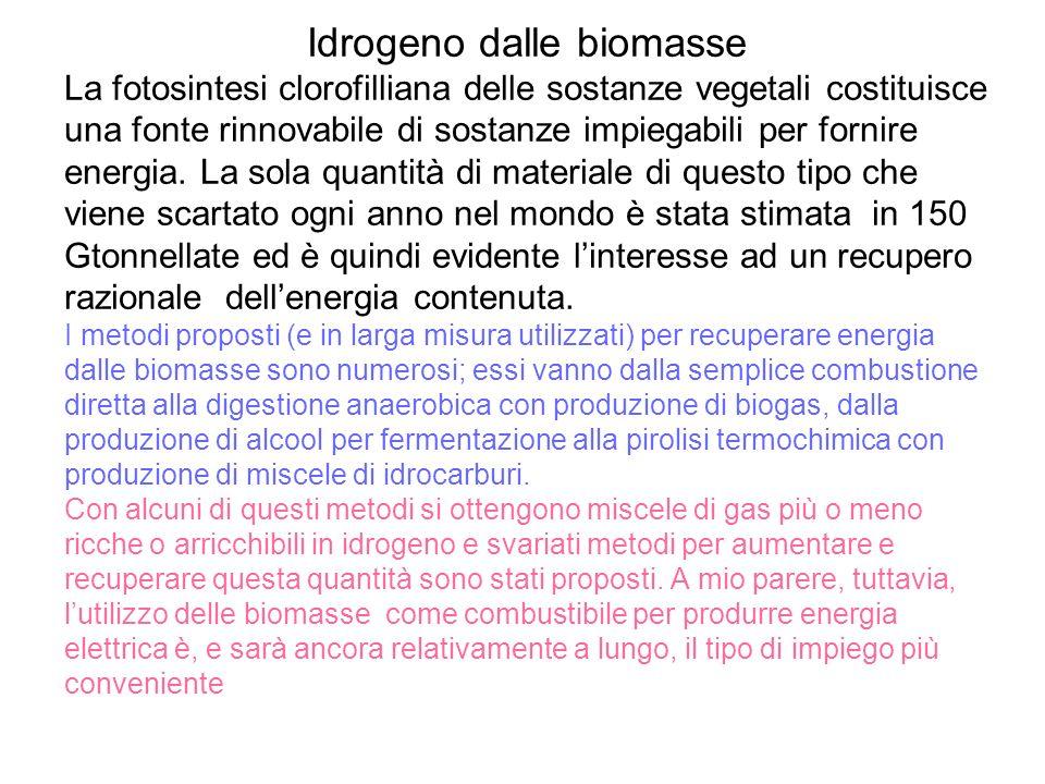 Idrogeno dalle biomasse La fotosintesi clorofilliana delle sostanze vegetali costituisce una fonte rinnovabile di sostanze impiegabili per fornire ene