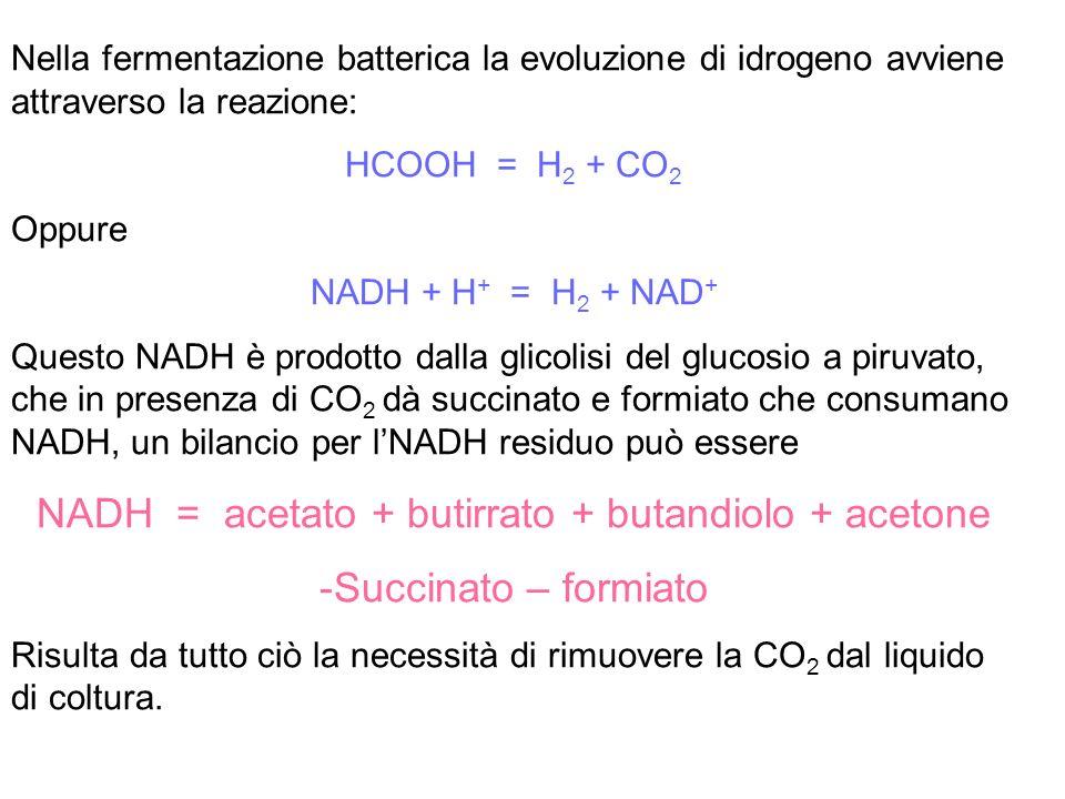 Nella fermentazione batterica la evoluzione di idrogeno avviene attraverso la reazione: HCOOH = H 2 + CO 2 Oppure NADH + H + = H 2 + NAD + Questo NADH