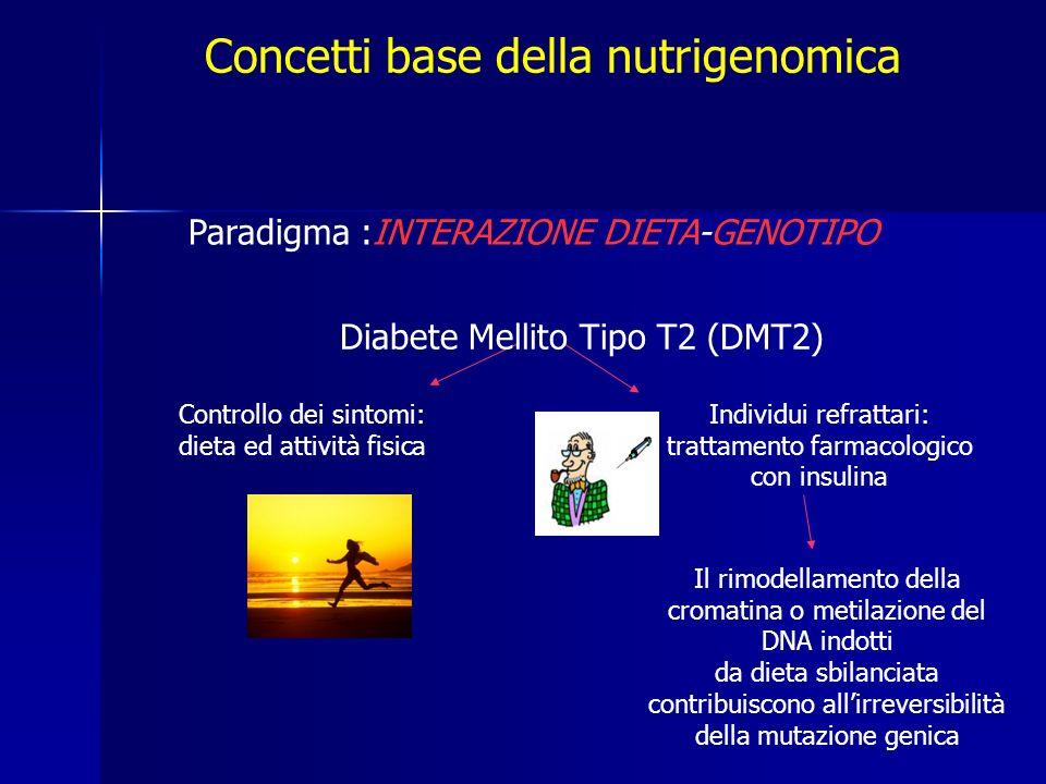 Concetti base della nutrigenomica Paradigma :INTERAZIONE DIETA-GENOTIPO Controllo dei sintomi: dieta ed attività fisica Individui refrattari: trattamento farmacologico con insulina Il rimodellamento della cromatina o metilazione del DNA indotti da dieta sbilanciata contribuiscono allirreversibilità della mutazione genica Diabete Mellito Tipo T2 (DMT2)