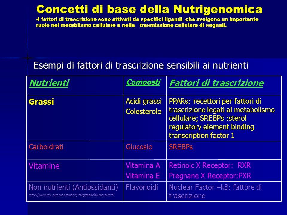 Esempi di fattori di trascrizione sensibili ai nutrienti Nuclear Factor –kB: fattore di trascrizione FlavonoidiNon nutrienti (Antiossidanti) http://www.my-personaltrainer.it/integratori/flavonoidi.html Retinoic X Receptor: RXR Pregnane X Receptor:PXR Vitamina A Vitamina E Vitamine SREBPsGlucosioCarboidrati PPARs: recettori per fattori di trascrizione legati al metabolismo cellulare; SREBPs :sterol regulatory element binding transcription factor 1 Acidi grassi Colesterolo Grassi Fattori di trascrizione Composti Nutrienti Concetti di base della Nutrigenomica -I fattori di trascrizione sono attivati da specifici ligandi che svolgono un importante ruolo nel metablismo cellulare e nella trasmissione cellulare di segnali.