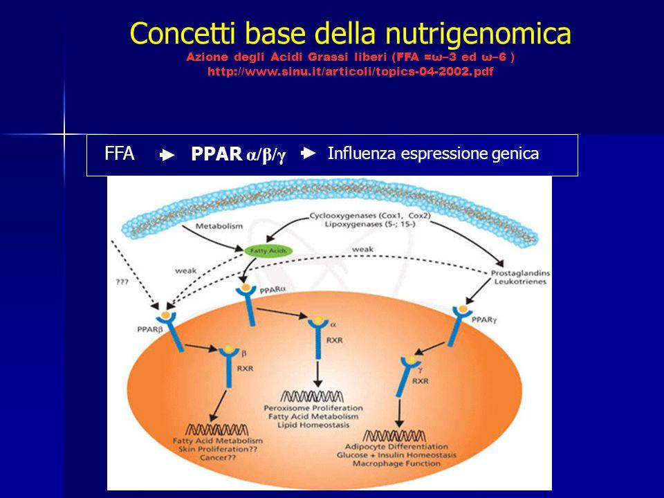 Concetti base della nutrigenomica Azione degli Acidi Grassi liberi (FFA =ω–3 ed ω–6 ) http://www.sinu.it/articoli/topics-04-2002.pdf FFA PPAR α/β/γ Influenza espressione genica