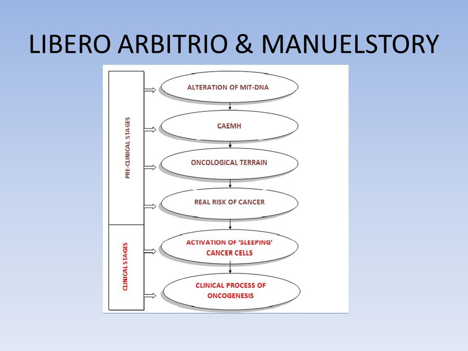 LIBERO ARBITRIO & MANUELSTORY