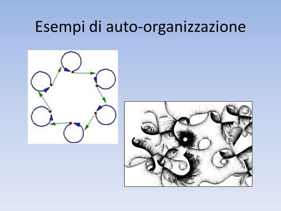 Esempi di auto-organizzazione