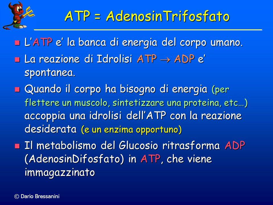 © Dario Bressanini ATP = AdenosinTrifosfato LATP e la banca di energia del corpo umano. LATP e la banca di energia del corpo umano. La reazione di Idr