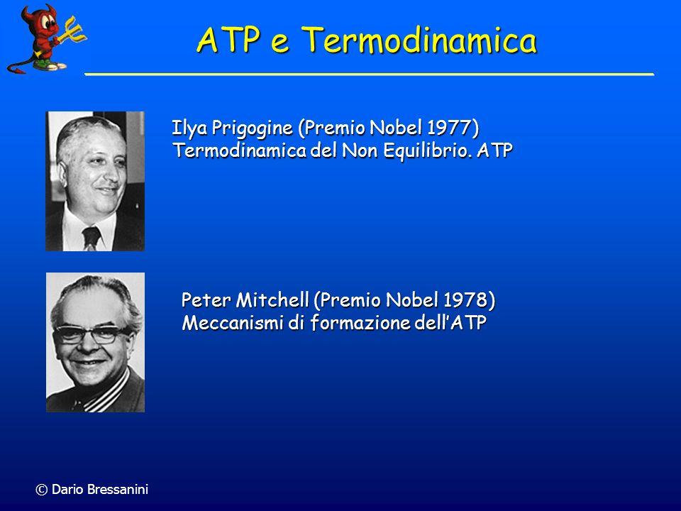 © Dario Bressanini Ilya Prigogine (Premio Nobel 1977) Termodinamica del Non Equilibrio. ATP Peter Mitchell (Premio Nobel 1978) Meccanismi di formazion