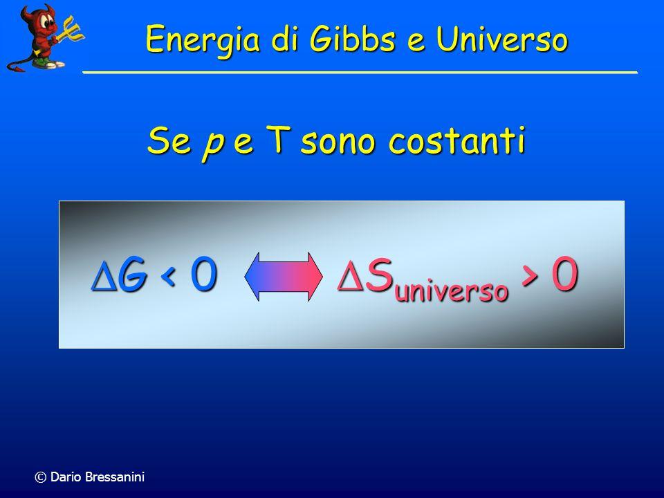 © Dario Bressanini Energia di Gibbs e Universo G < 0 G < 0 S universo > 0 S universo > 0 Se p e T sono costanti