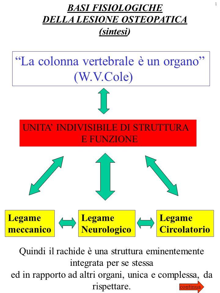 BASI FISIOLOGICHE DELLA LESIONE OSTEOPATICA (sintesi) La colonna vertebrale è un organo (W.V.Cole) UNITA INDIVISIBILE DI STRUTTURA E FUNZIONE Legame m