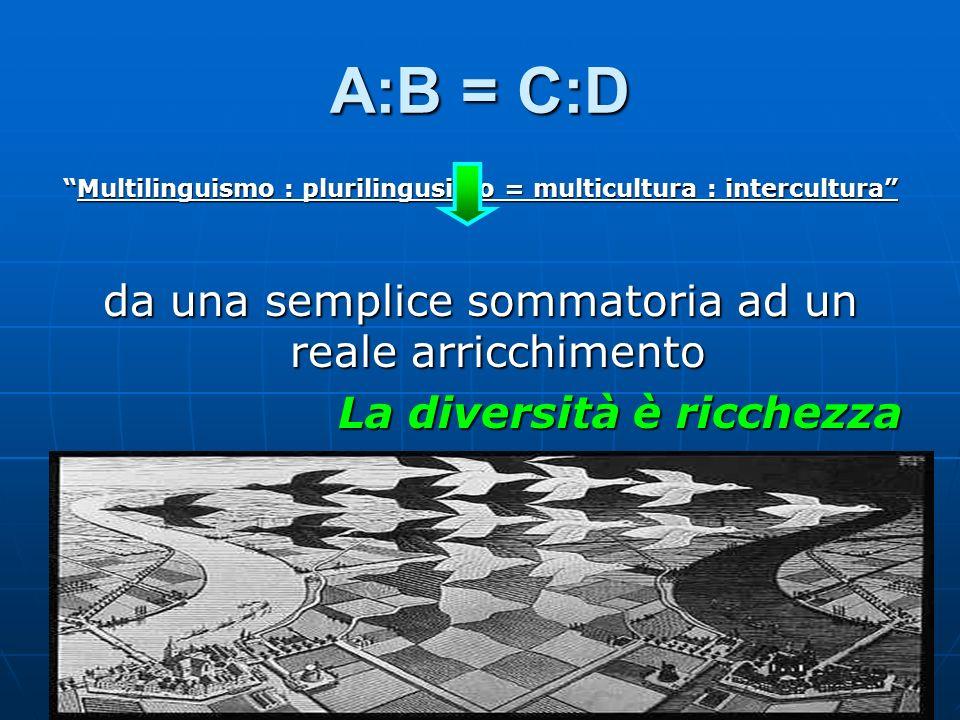 A:B = C:D Multilinguismo : plurilingusimo = multicultura : interculturaMultilinguismo : plurilingusimo = multicultura : intercultura da una semplice s