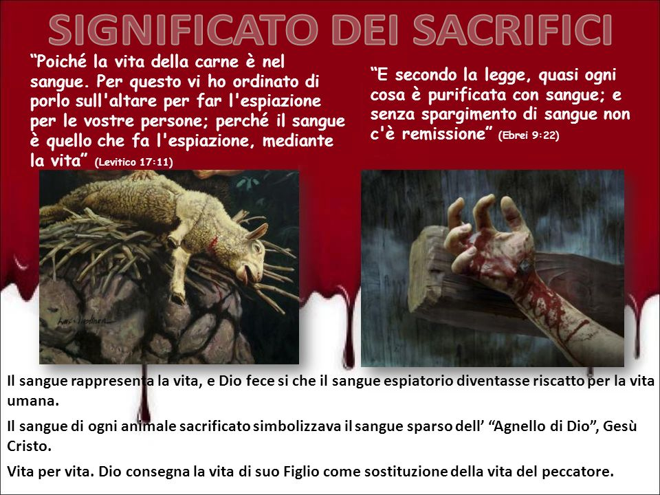 Poiché la vita della carne è nel sangue. Per questo vi ho ordinato di porlo sull'altare per far l'espiazione per le vostre persone; perché il sangue è