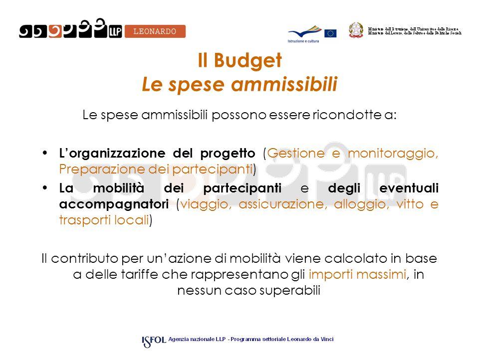 Il Budget Le spese ammissibili Le spese ammissibili possono essere ricondotte a: Lorganizzazione del progetto (Gestione e monitoraggio, Preparazione d