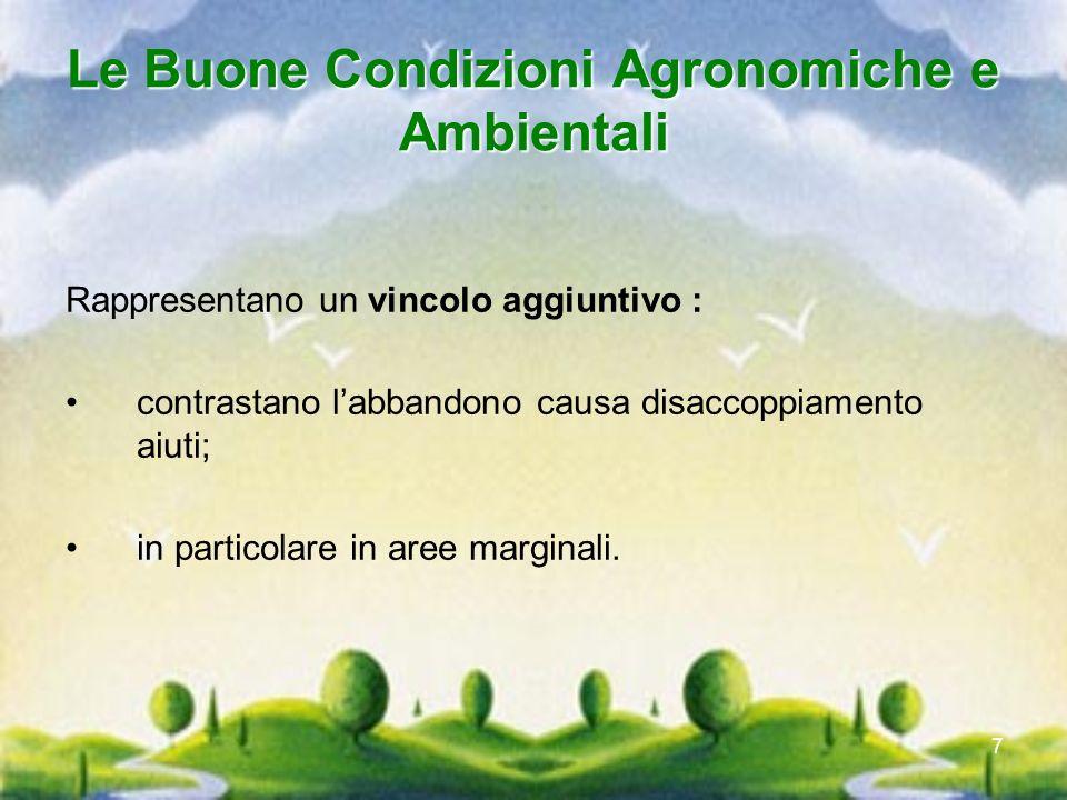 7 Le Buone Condizioni Agronomiche e Ambientali Rappresentano un vincolo aggiuntivo : contrastano labbandono causa disaccoppiamento aiuti; in particola