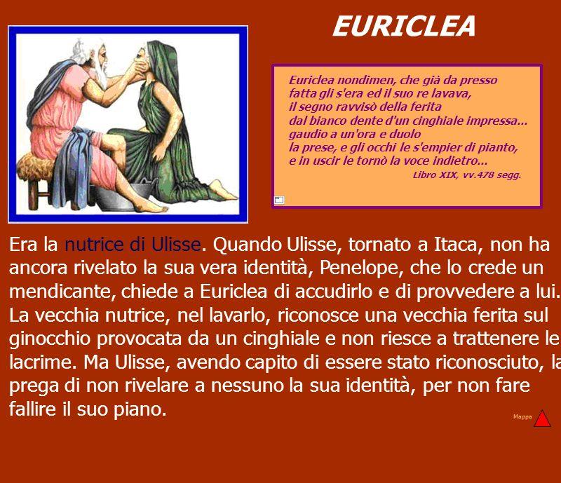 EURICLEA Euriclea nondimen, che già da presso fatta gli s'era ed il suo re lavava, il segno ravvisò della ferita dal bianco dente d'un cinghiale impre