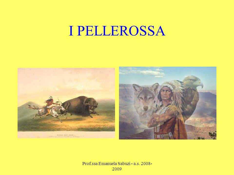 I PELLEROSSA Prof.ssa Emanuela Sabuzi - a.s. 2008- 2009