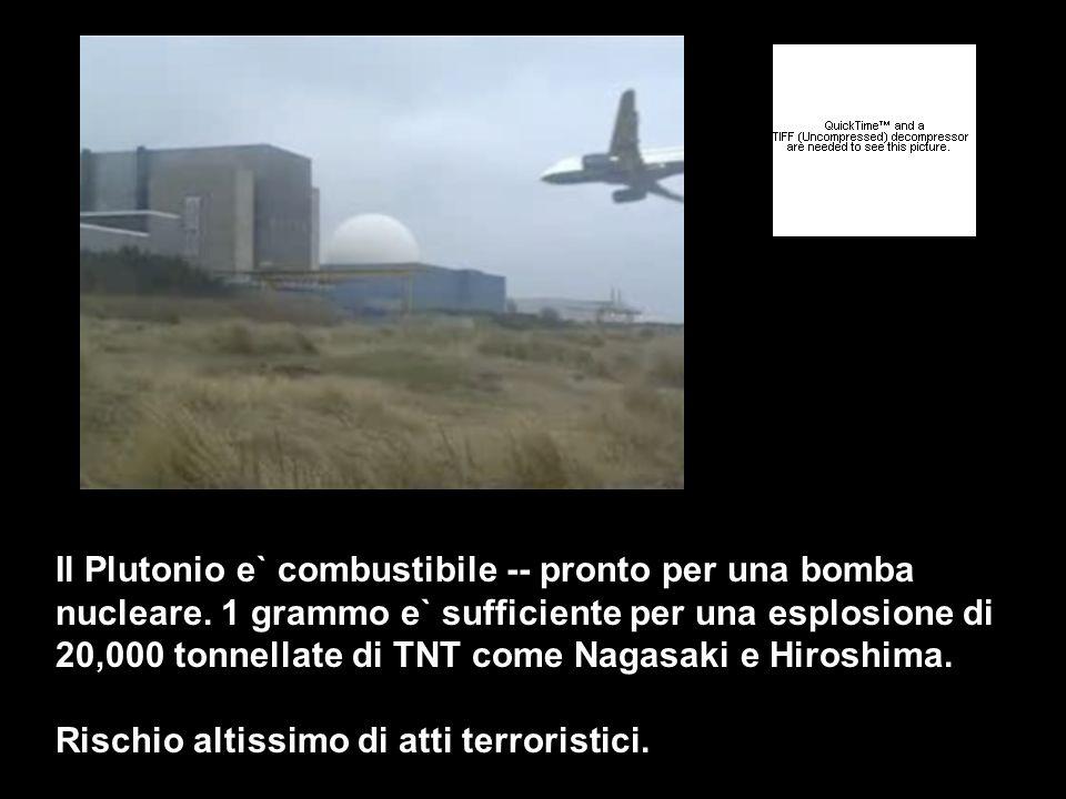 Il Plutonio e` combustibile -- pronto per una bomba nucleare. 1 grammo e` sufficiente per una esplosione di 20,000 tonnellate di TNT come Nagasaki e H