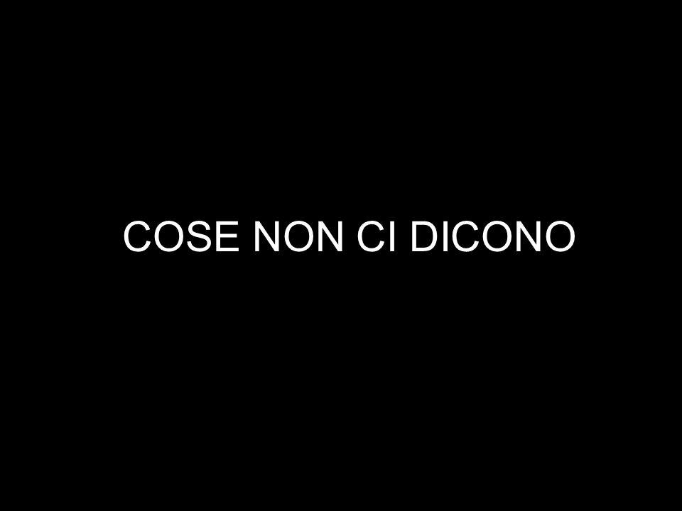 5.Lavoriamo tutti in Italia insieme alla prossima tappa critica che e` il Secondo Referendum Nazionale sul Nucleare approvato per il 12 Giugno alle urne in tutto l Italia.