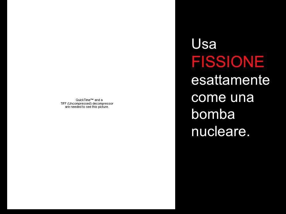 NOTA BENE: La gestione di una centrale nucleare e` diversa da qualsiasi altro tipo di operazione pericolosa nel mondo.