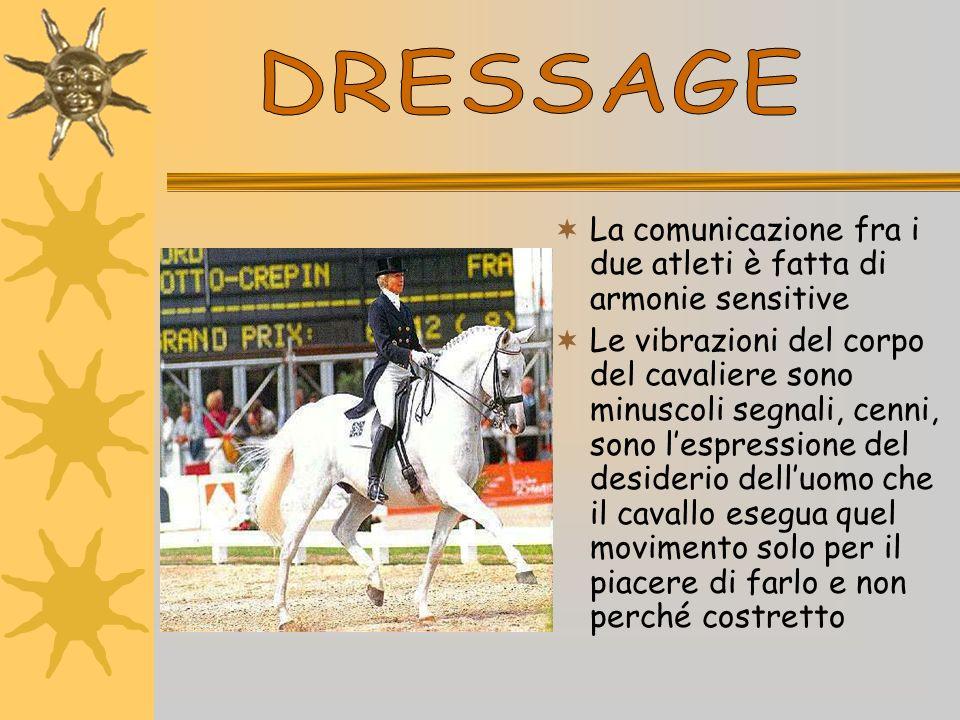 La comunicazione fra i due atleti è fatta di armonie sensitive Le vibrazioni del corpo del cavaliere sono minuscoli segnali, cenni, sono lespressione