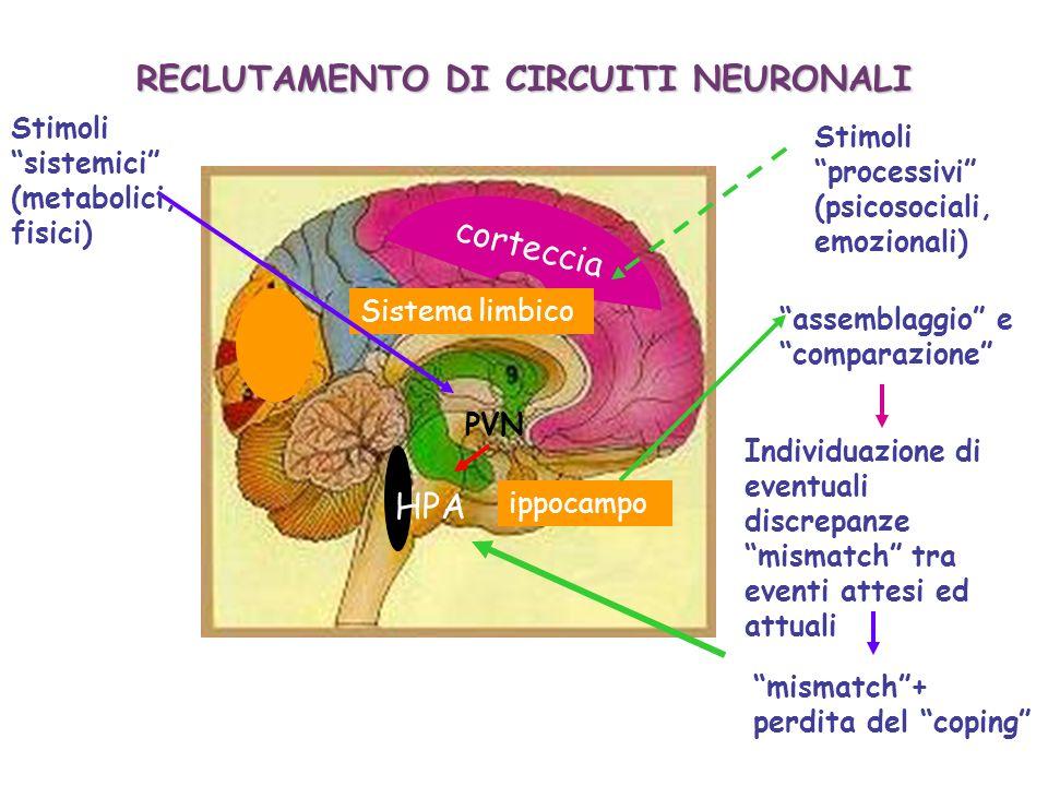 corteccia ippocampo Sistema limbico RECLUTAMENTO DI CIRCUITI NEURONALI HPA mismatch+ perdita del coping Stimoli processivi (psicosociali, emozionali)