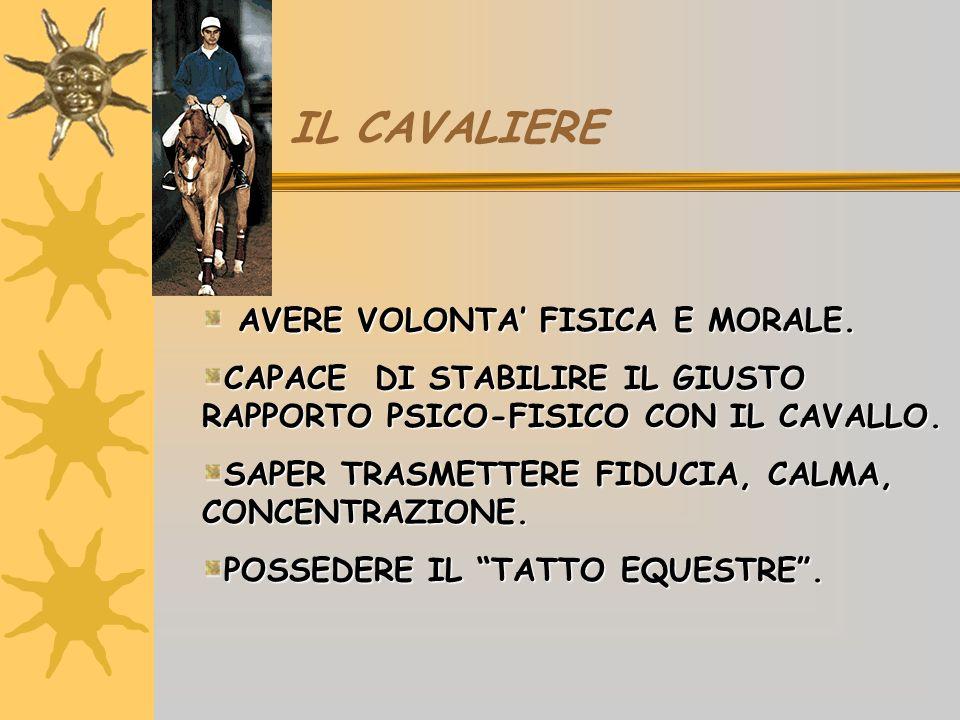 BINOMIO CAVALLO-CAVALIERE E FONDATO SULLA COMPRENSIONE E SULLA COMPENSAZIONE.