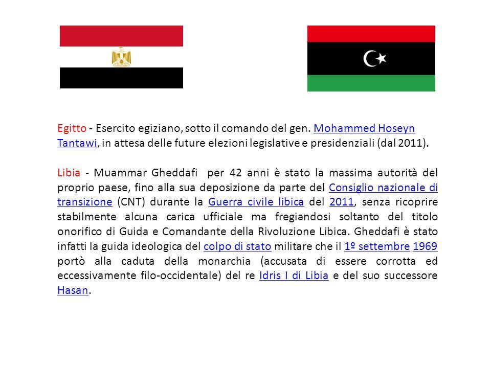 Egitto - Esercito egiziano, sotto il comando del gen. Mohammed Hoseyn Tantawi, in attesa delle future elezioni legislative e presidenziali (dal 2011).