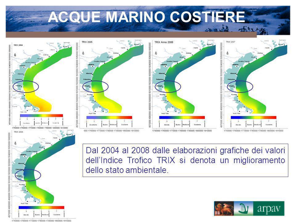 Dal 2004 al 2008 dalle elaborazioni grafiche dei valori dellIndice Trofico TRIX si denota un miglioramento dello stato ambientale.