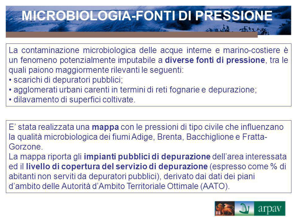 MICROBIOLOGIA-FONTI DI PRESSIONE La contaminazione microbiologica delle acque interne e marino-costiere è un fenomeno potenzialmente imputabile a dive