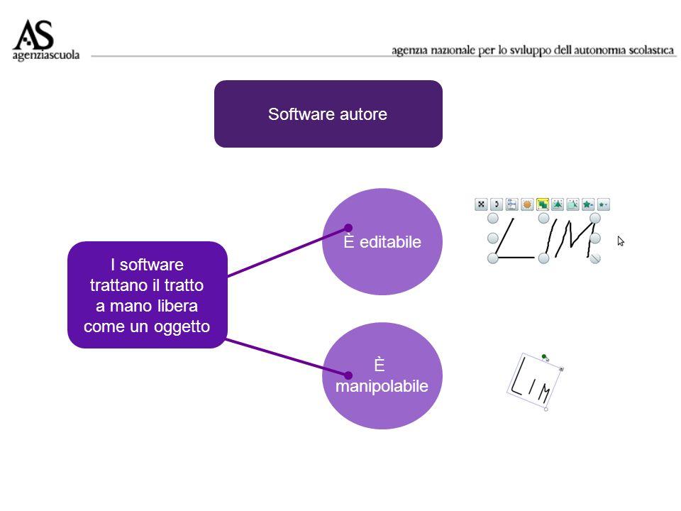 È editabile È manipolabile I software trattano il tratto a mano libera come un oggetto