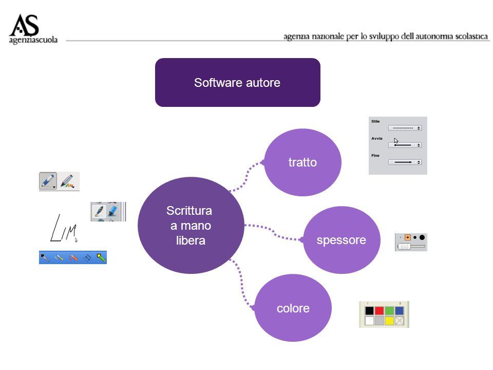 Software autore Scrittura a mano libera tratto spessore colore