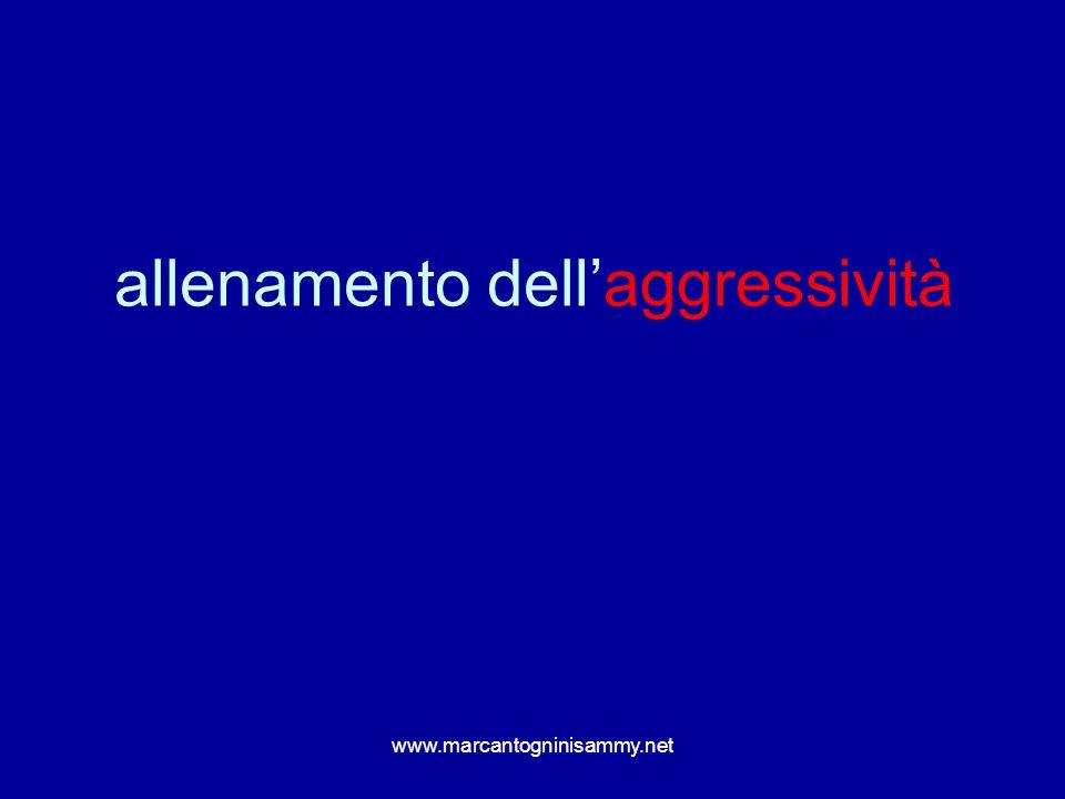 www.marcantogninisammy.net aggressività e contatto