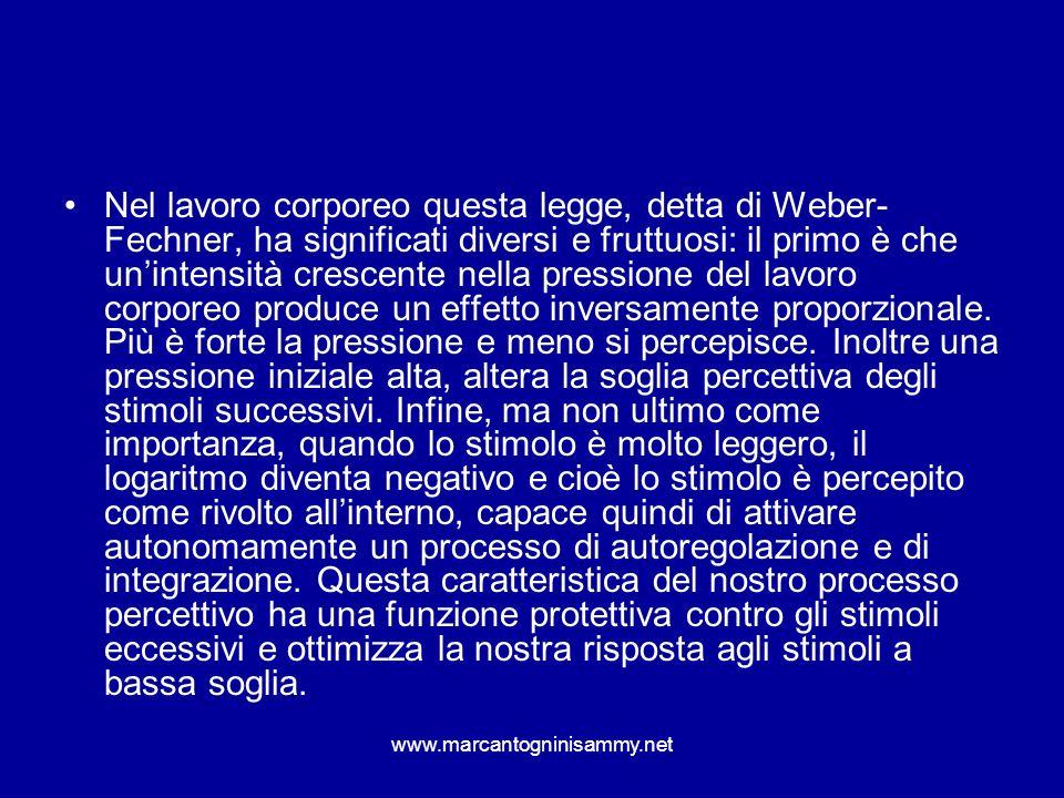 www.marcantogninisammy.net Nel lavoro corporeo questa legge, detta di Weber- Fechner, ha significati diversi e fruttuosi: il primo è che unintensità c