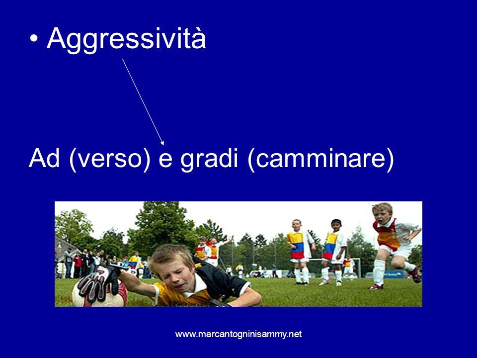 www.marcantogninisammy.net Se i ragazzi non sono abituati al contatto con laltro, molto spesso la loro aggressività risulta diventare sproporzionata