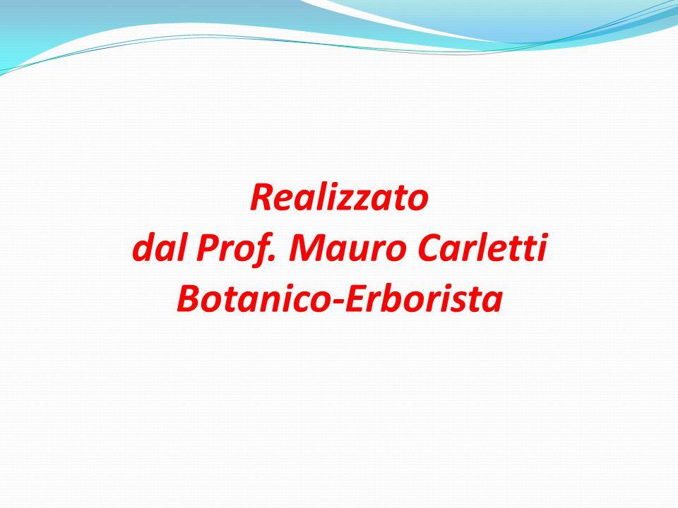 Realizzato dal Prof. Mauro Carletti Botanico-Erborista