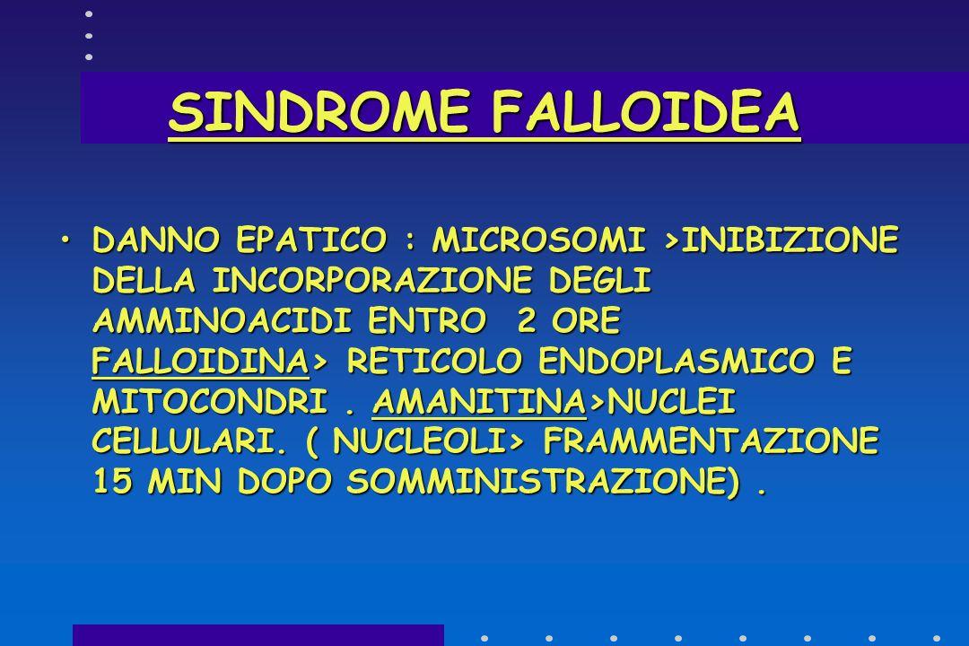 SINDROME FALLOIDEA @-AMANITINA>NUCLEO>INIBIZIONE RNA-POLIMERASI II° >ARRESTO TRASCRIZIONE DEL DNA IN RNA MESSAGGERO >>MEMBRANE CELLULARI>INIBIZIONE SI