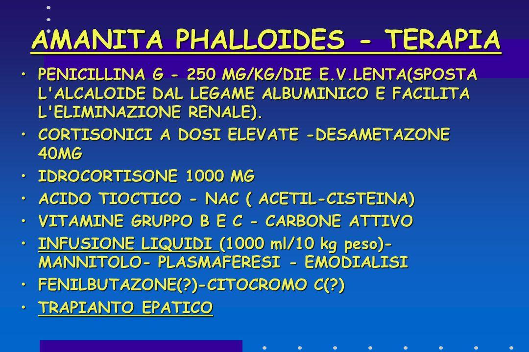 AMANITA PHALLOIDES : QUADRO CLINICO ONSET SINTOMI : 7-8 ORE/ 3-4 GIORNIONSET SINTOMI : 7-8 ORE/ 3-4 GIORNI FALLOIDINA > NAUSEA-VOMITO-CRAMPI ADDOMINAL