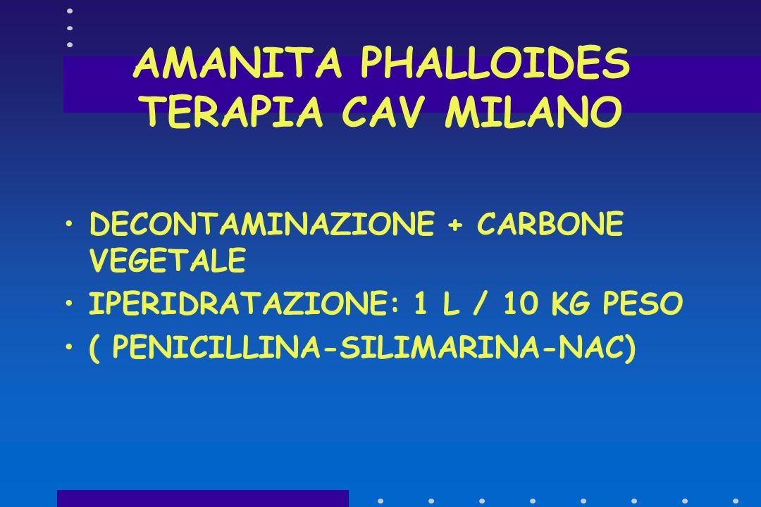 AMANITA PHALLOIDES - TERAPIA PENICILLINA G - 250 MG/KG/DIE E.V.LENTA(SPOSTA L'ALCALOIDE DAL LEGAME ALBUMINICO E FACILITA L'ELIMINAZIONE RENALE).PENICI