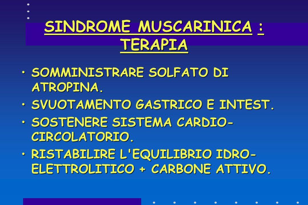 SINDROME NEUROTOSSICA MUSCARINICA:SINTOMI ONSET:1-2 hONSET:1-2 h ACIDO IBOTENICO E MUSCIMOLOACIDO IBOTENICO E MUSCIMOLO CEFALEA-SONNOLENZA-ATASSIACEFA