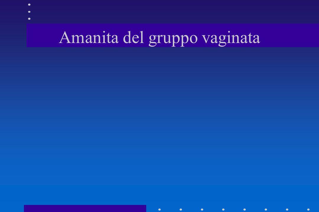 SINDROME ELVELLICA (A LUNGA LATENZA) TOSSICO: EMOLISINE TERMOLABILI(COTTURA UNIFORME A 70°, IN PADELLA)TOSSICO: EMOLISINE TERMOLABILI(COTTURA UNIFORME