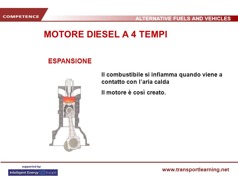 ALTERNATIVE FUELS AND VEHICLES www.transportlearning.net DISTRIBUZIONE