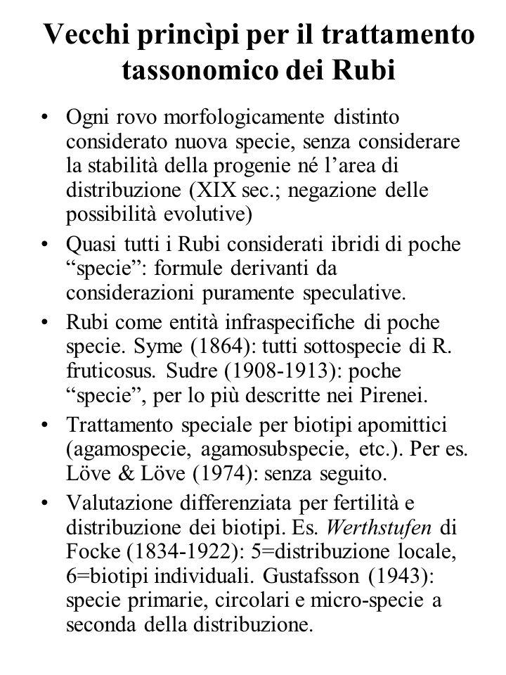 Vecchi princìpi per il trattamento tassonomico dei Rubi Ogni rovo morfologicamente distinto considerato nuova specie, senza considerare la stabilità d