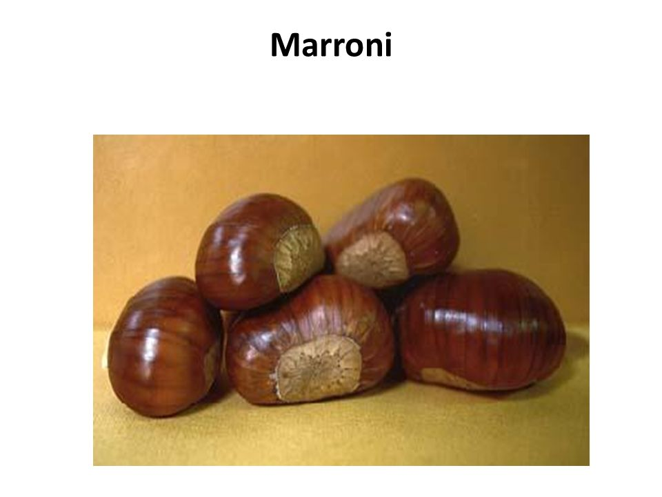 Marroni