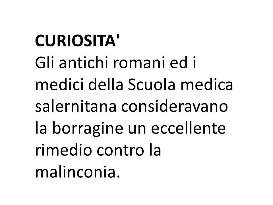 CURIOSITA' Gli antichi romani ed i medici della Scuola medica salernitana consideravano la borragine un eccellente rimedio contro la malinconia.