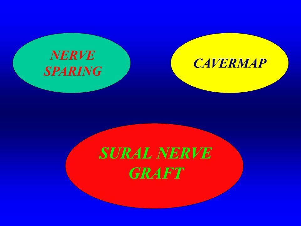 CAVERMAP NERVE SPARING SURAL NERVE GRAFT