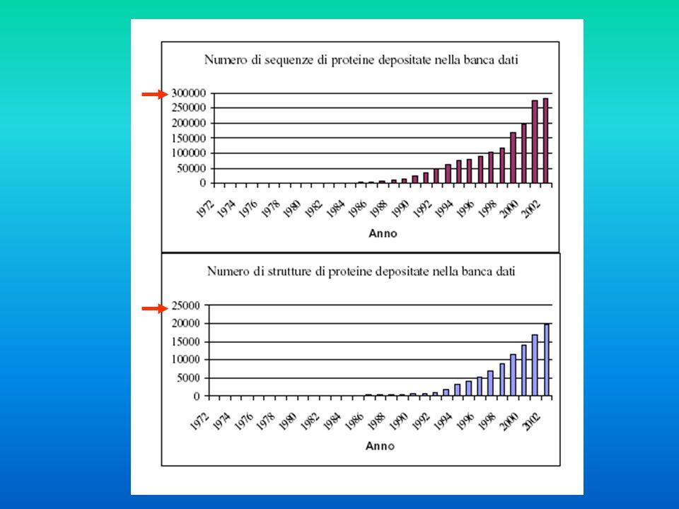 Sequenze simili Strutture simili Sequenze Strutture