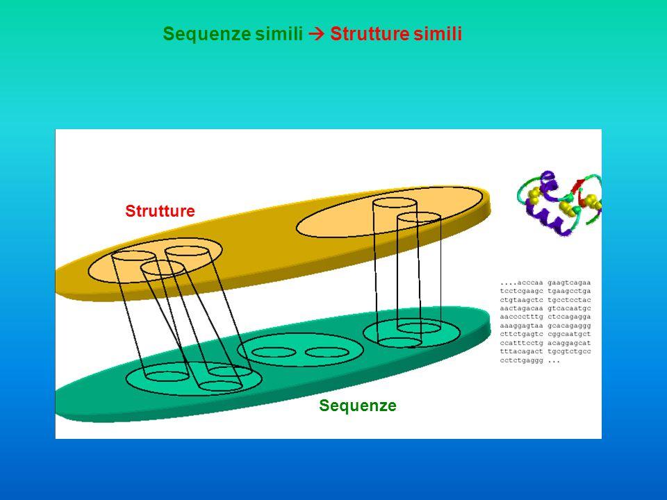 Sequenze Strutture Sequenze diverse Strutture simili