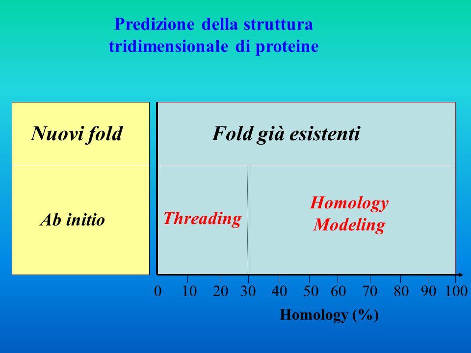 Informazione minima necessaria: Sequenza della proteina Esistono proteine con sequenza simile e struttura 3D nota .