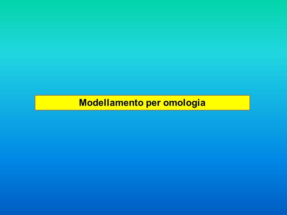 Modellamento comparativo Alta identità di sequenza buon allineamento delle sequenze buoni modelli ottenuti per omologia Permette di costruire il modello 3D di una proteina (target) a partire da proteine omologhe (template), la cui struttura è stata caratterizzata sperimentalmente.