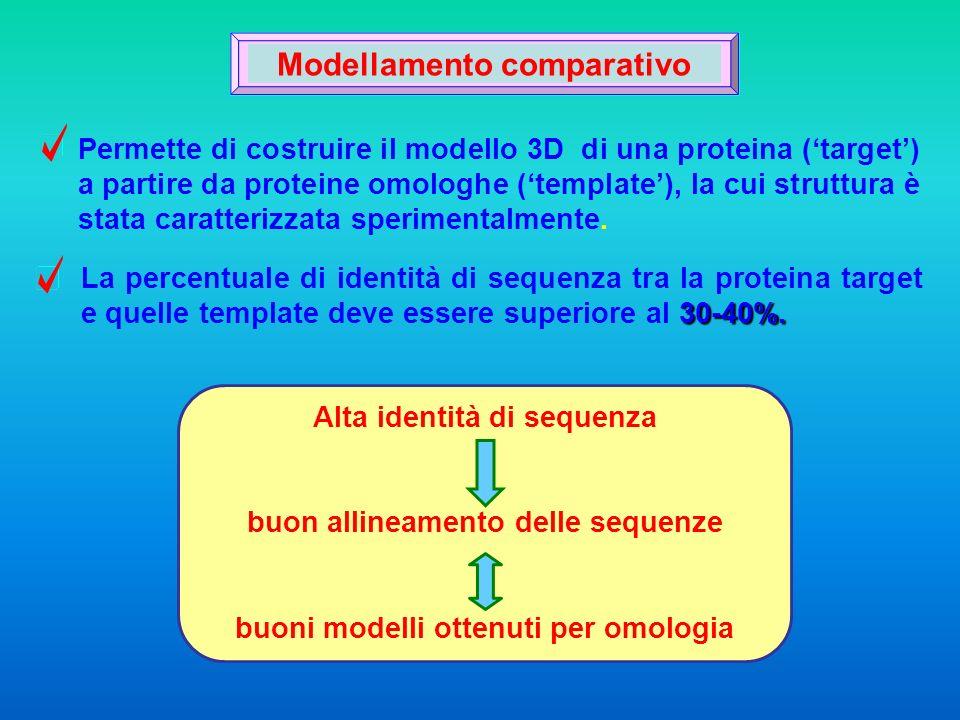 Modellamento Comparativo Modellamento delle Regioni strutturalmente conservate (SCR) Modellamento delle Regioni Loop Modellamento delle Catene Laterali Raffinamento del modellamento