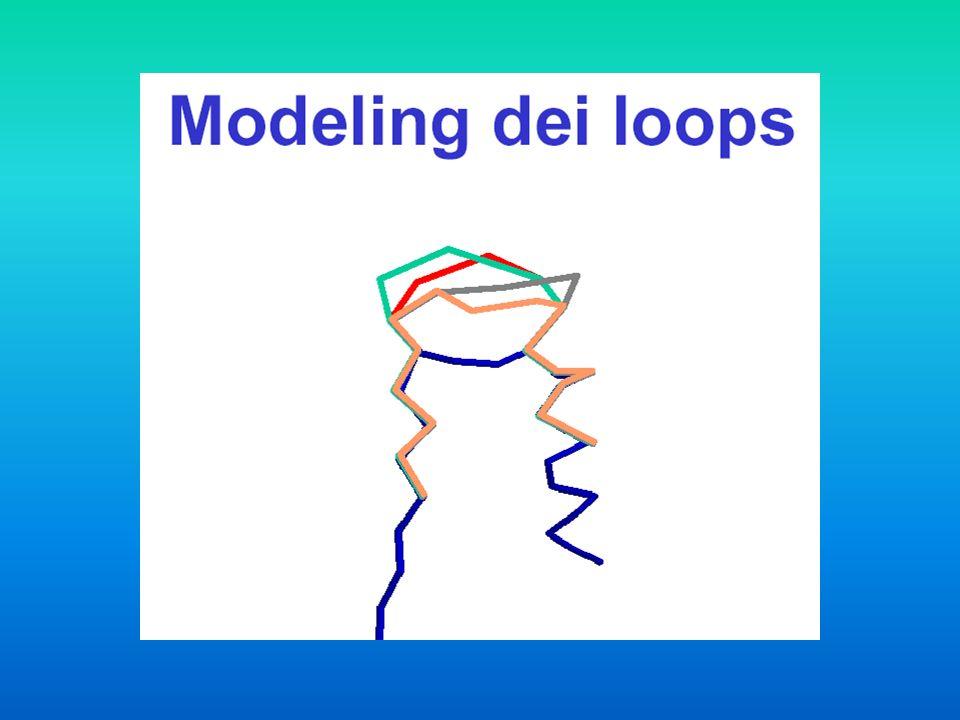 Come si predice la conformazione dei loops.Metodi basati sullottimizzazione delle conformazioni.