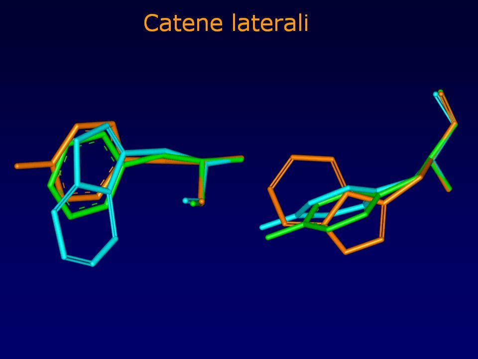 Modellamento catene laterali Le catene laterali degli amminoacidi hanno conformazioni energeticamente favorite, che si traducono nella frequenza con cui ogni amminoacido assume una determinata conformazione in proteine a struttura nota.